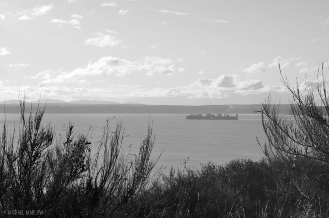 brush in the foreground with long tanker in expanse of water under gentle clouds